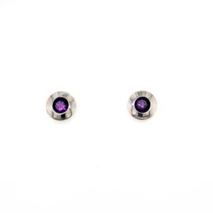 Leon Baker Sterling Silver and Amethyst Earrings_0